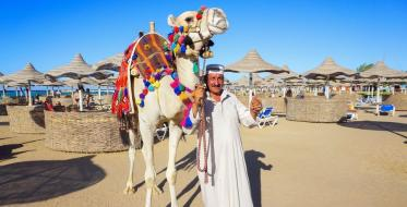 Hurghada: Here summer never ends!